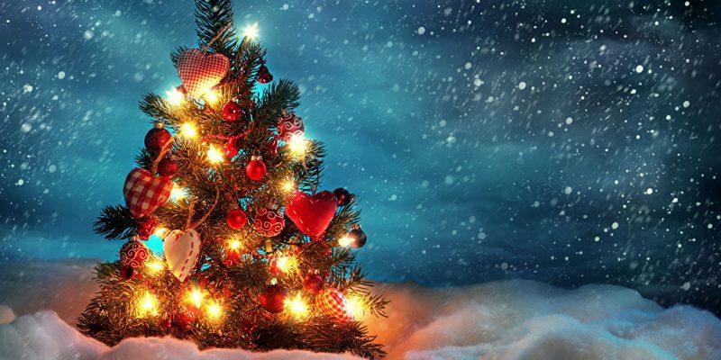 Режим работы катка в новогодние праздники