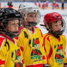 Детская хоккейная школа